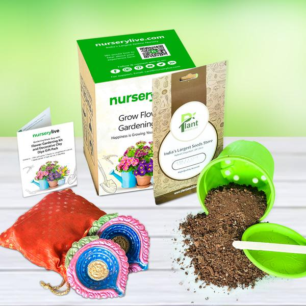 Gardening Made Easy with Flower gardening Kit and Decorative Clay Diya Gift Pack