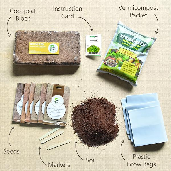 Gardening Made Easy with Herb Gardening Kit