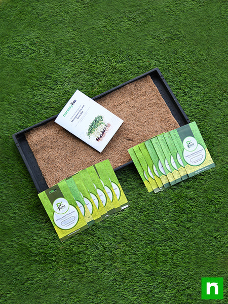 Gardening Made Easy with Microgreens Tray and Grow Mats