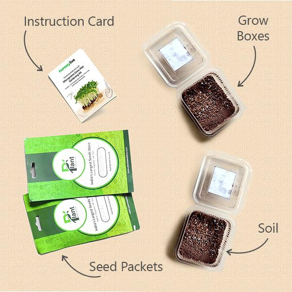 Gardening Made Easy with Nutritious Microgreens Gardening Kit