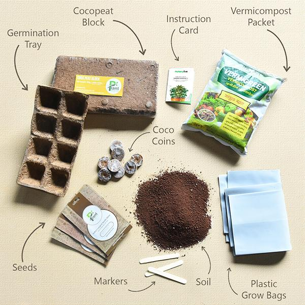 Gardening Made Easy with Vegetable Gardening Kit