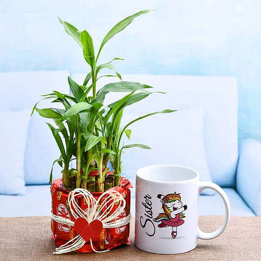 2 Layer Lucky Bamboo with Chocolate for Sweet Sister - Nurserylive