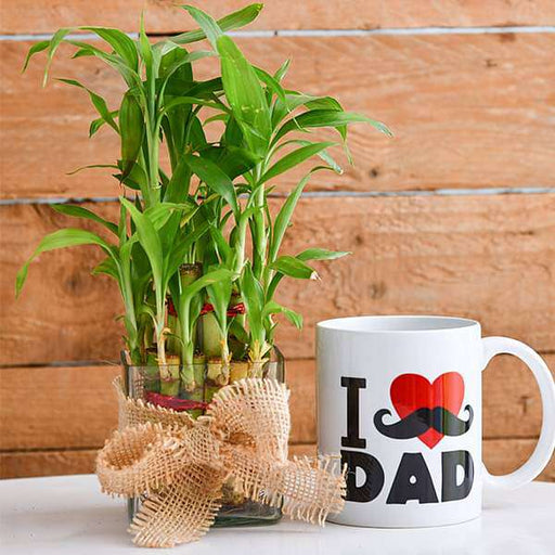 2 Layer Lucky Bamboo with I Love Dad Mug - Nurserylive