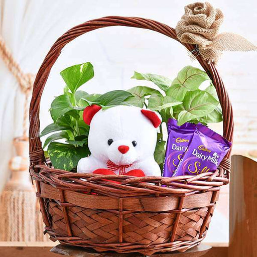 Basket of Joy for Someone Special - Nurserylive