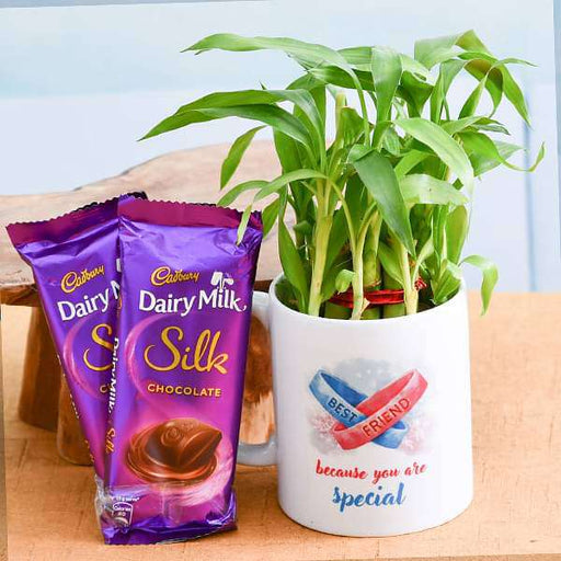 Best wishes for Best Buddy with 2 Layer Lucky Bamboo and Chocolates - Nurserylive