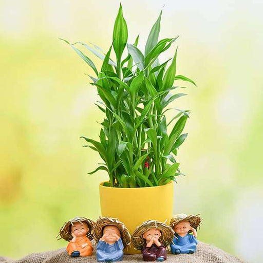 Celebrate Happiness with 3 Layer Lucky Bamboo and Cute Monks - Nurserylive