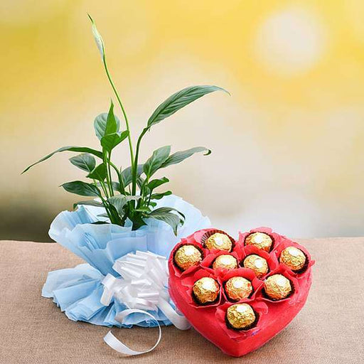Peace lily with Chocolates for Sweet Memories - Nurserylive