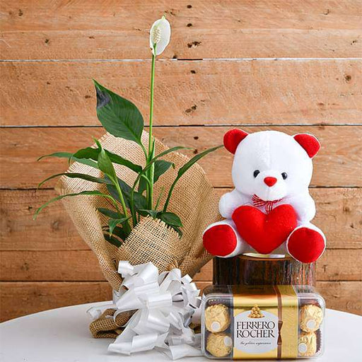 Pleasing Peace Lily with Chocolate and Cute Teddy for Someone Special - Nurserylive