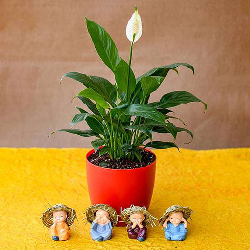 Pleasing Peace Lily with Cute Hay Hat Monks - Nurserylive