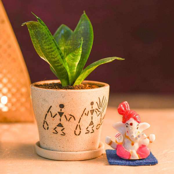 Sansevieria Plant in Decorative Ceramic Pot with Lord Ganesha Idol - Nurserylive