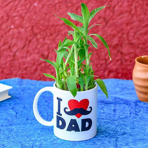 Special 2 Layer Lucky Bamboo in I Love Dad Mug - Nurserylive