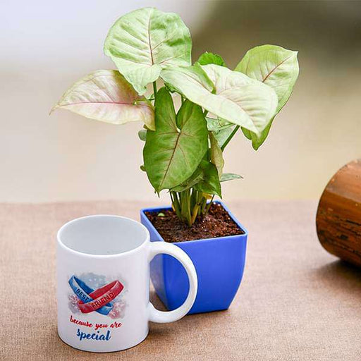 Special Syngonium Plant with Mug for Special Friend - Nurserylive