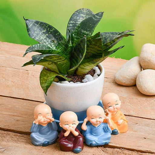 Wish Happiness with Super Sansevieria in a Ceramic pot and Cute monks - Nurserylive