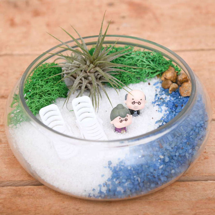 DIY Beach Fun - Miniature Garden - Nurserylive