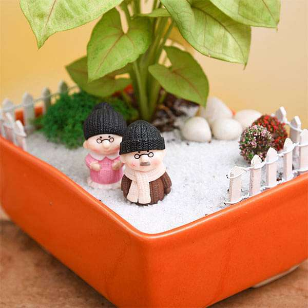 DIY Dada Dadi Enjoying Snowfall in Garden - Miniature Garden - Nurserylive
