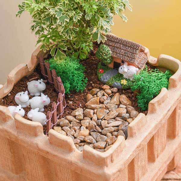 DIY Grazing sheep - Miniature Garden - Nurserylive