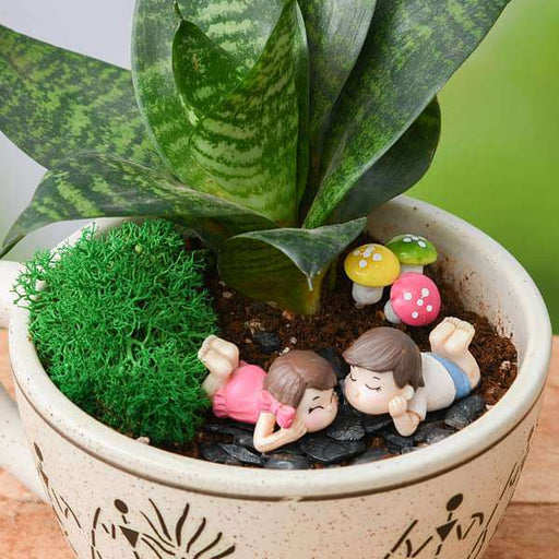 DIY Joyful Moments - Miniature Garden - Nurserylive