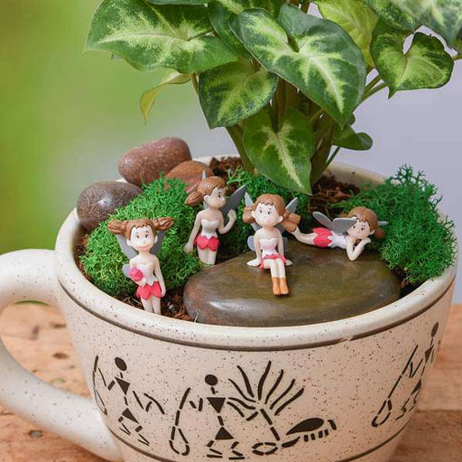 DIY The fairy garden for baby shower - Miniature Garden - Nurserylive