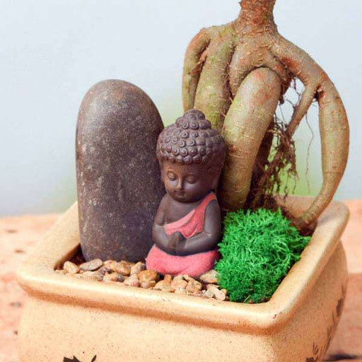 Praying Buddha - Miniature Garden - Nurserylive