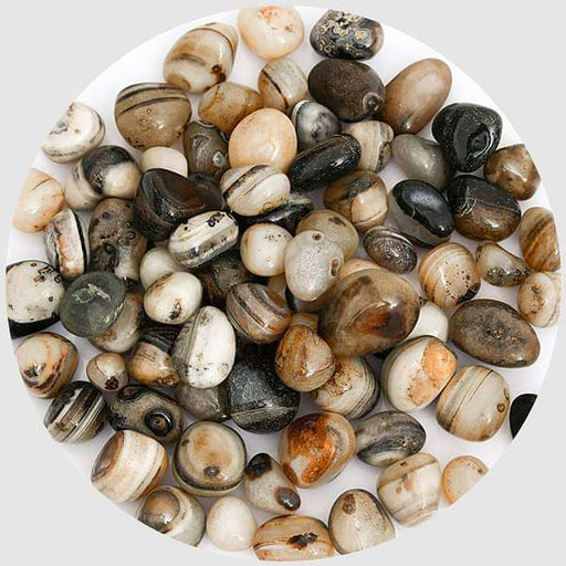 Onex Pebbles (Brown, Medium) - 1 kg - Nurserylive