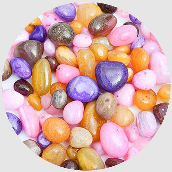 Onex Pebbles (Mix Color, Medium)- 1 kg - Nurserylive