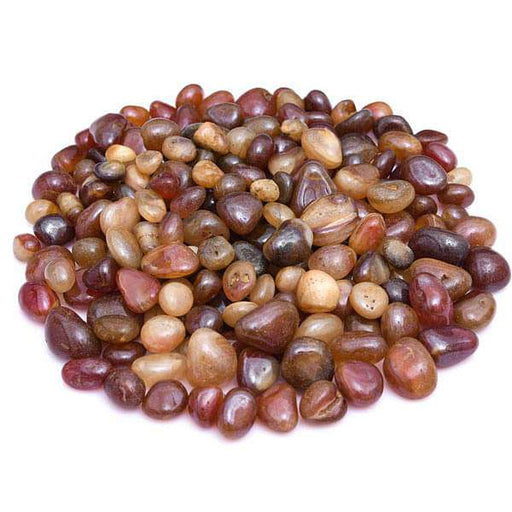 Onex Pebbles, (Wine Color, Medium) - 1 kg - Nurserylive
