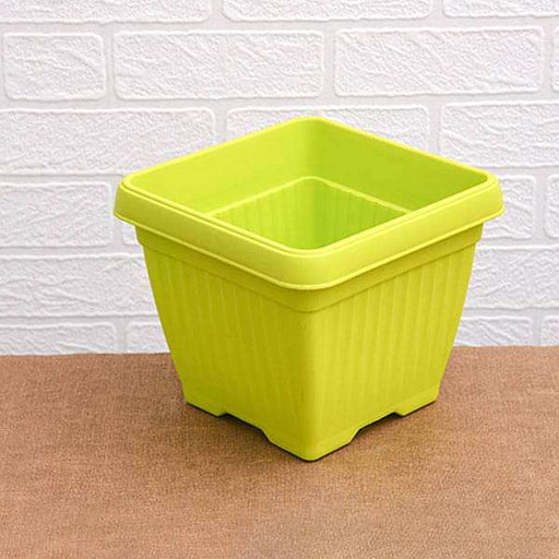 10 inch (25 cm) Bello Square Plastic Pot (Lime Yellow) (set of 3) - Nurserylive
