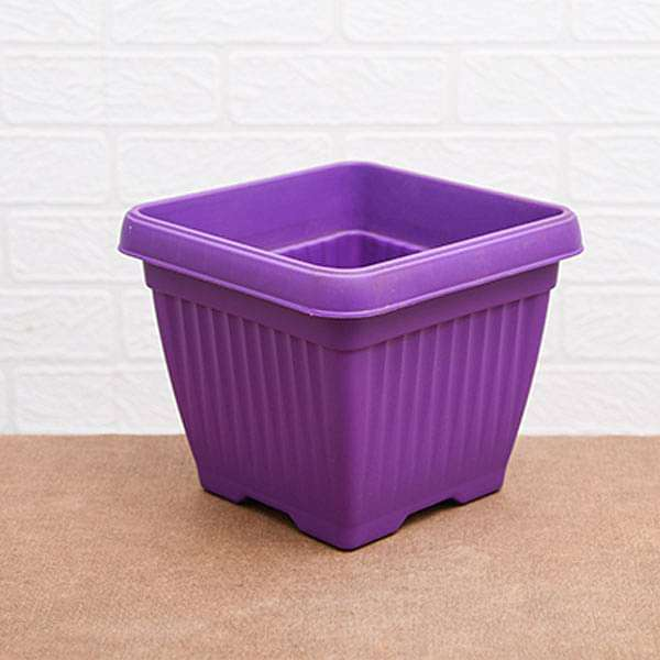 10 inch (25 cm) Bello Square Plastic Pot (Violet) (set of 3) - Nurserylive