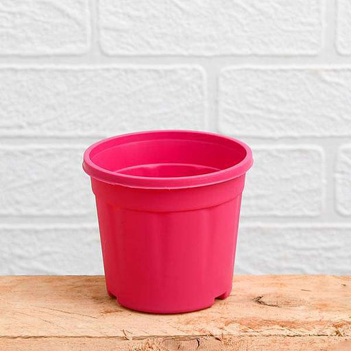 10 inch (25 cm) Grower Round Plastic Pot (Dark Pink) (set of 3) - Nurserylive