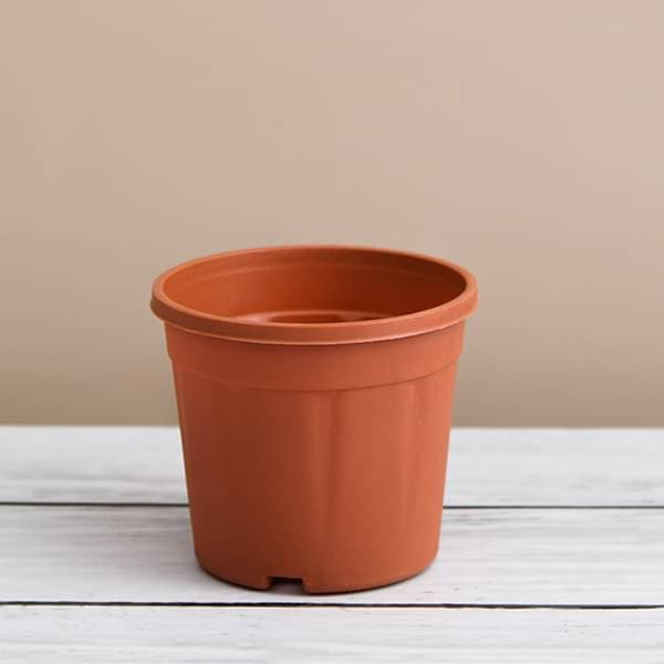 10 inch (25 cm) Grower Round Plastic Pot (Terracotta Color) (set of 6) - Nurserylive