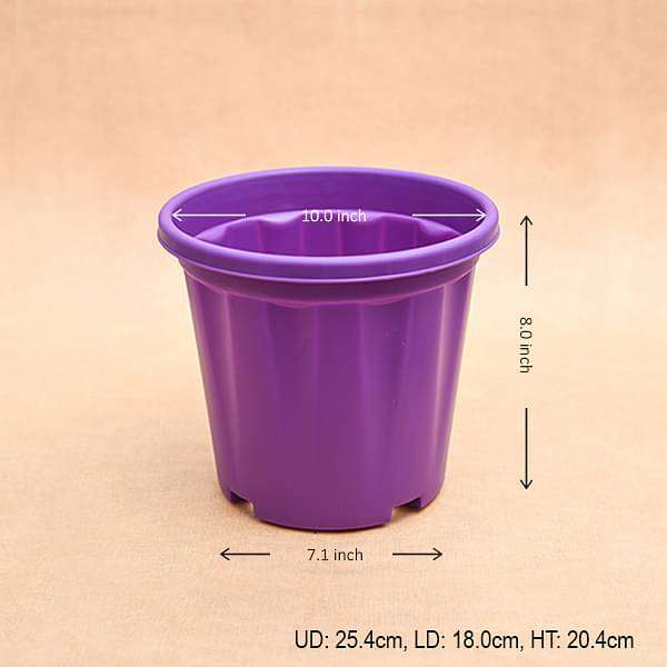 10 inch (25 cm) Grower Round Plastic Pot (Violet) (set of 3) - Nurserylive