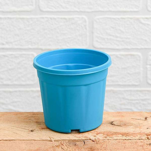 12 inch (30 cm) Grower Round Plastic Pot (Sky Blue) (set of 3) - Nurserylive