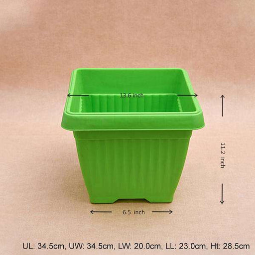 14 inch (36 cm) Bello Square Plastic Pot (Green) (set of 3) - Nurserylive