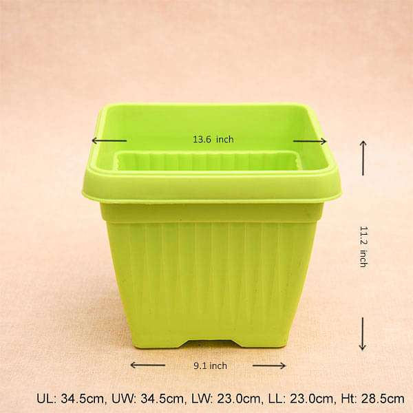 14 inch (36 cm) Bello Square Plastic Pot (Lime Yellow) (set of 3) - Nurserylive