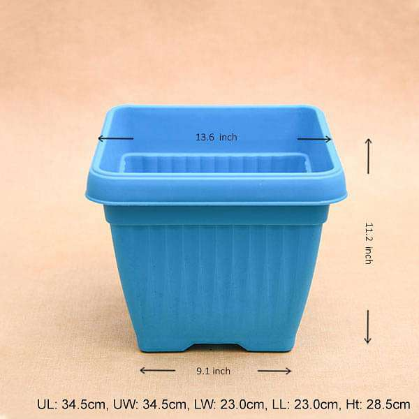 14 inch (36 cm) Bello Square Plastic Pot (Sky Blue) (set of 3) - Nurserylive
