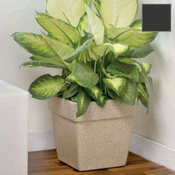 15.7 inch (40 cm) Barca No. 40 Stone Finish Square Rotomoulded Plastic Planter With Wheels (Grey) - Nurserylive