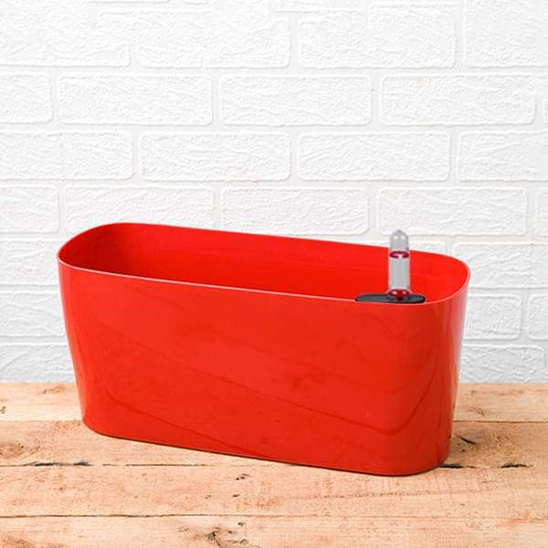 15.8 inch (40 cm) Florida Self Watering Oval Plastic Planter (Red) - Nurserylive