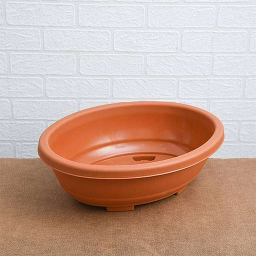 16.1 inch (41 cm) Bonsai Oval Plastic Pot (Terracotta Color) (set of 3) - Nurserylive