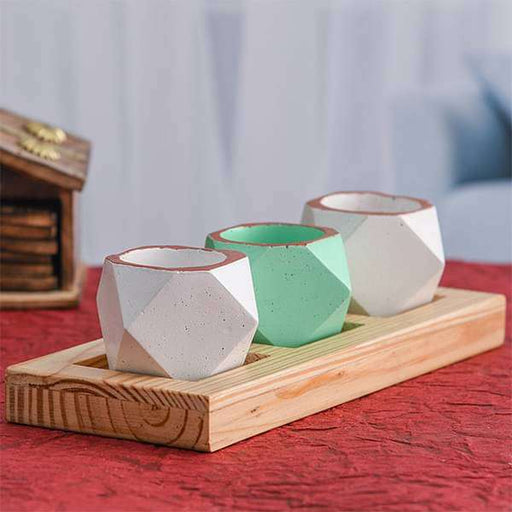 2.4 inch (6 cm) Set of 3 Octave Concrete Pot with Wooden Plate (Pista Green, Rustic White) - Nurserylive