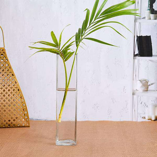 2 inch (5 cm) Square Glass Vase (9 inch (23 cm) Height) - Nurserylive