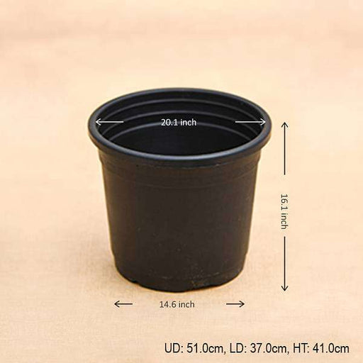 20 inch (51 cm) Grower Round Plastic Pot (Black) - Nurserylive