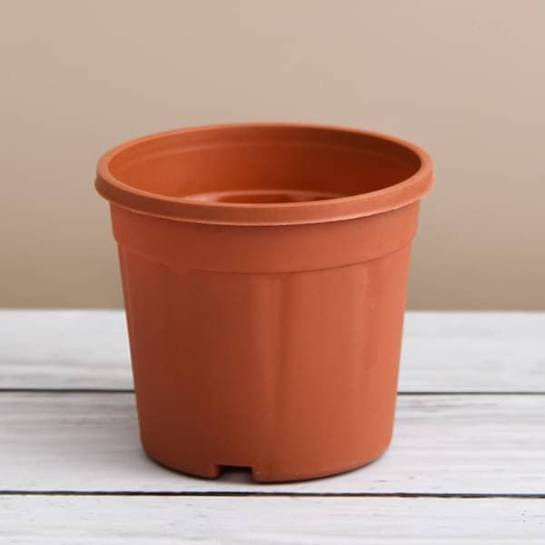 20 inch (51 cm) Grower Round Plastic Pot (Terracotta Color) - Nurserylive