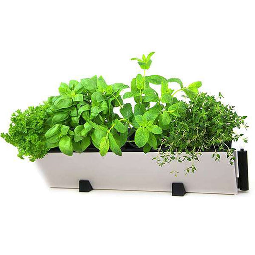 22.4 inch (57 cm) Hydrofall Self Watering Rectangle Plastic Planter Kit (Ivory) - Nurserylive