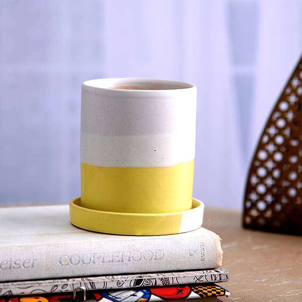3.1 inch (8 cm) CP046 Cylindrical Ceramic Pot with Plate (White, Yellow) (set of 2) - Nurserylive