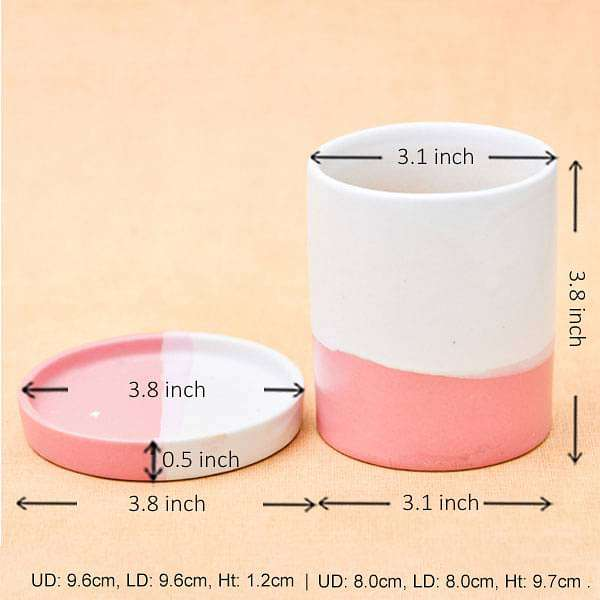 3.1 inch (8 cm) CP047 Cylindrical Ceramic Pot with Plate (White, Light Peach) (set of 2) - Nurserylive