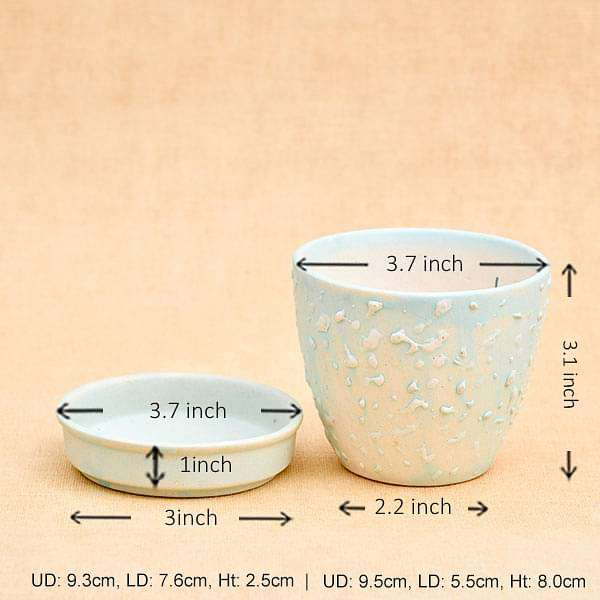 3.7 inch (9 cm) CP018  Embossed Round Egg Ceramic Pot With Plate  (Aqua Blue) (set of 2) - Nurserylive