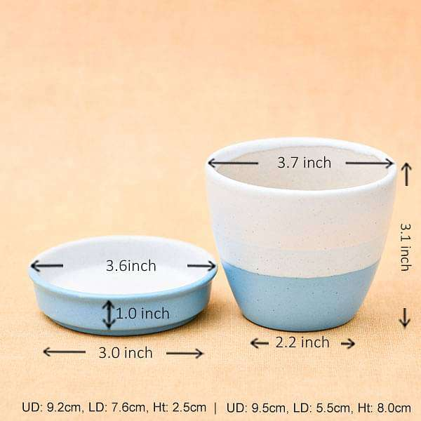 3.7 inch (9 cm) CP036  Round Egg Ceramic Pot with Plate (White, Blue) (set of 2) - Nurserylive