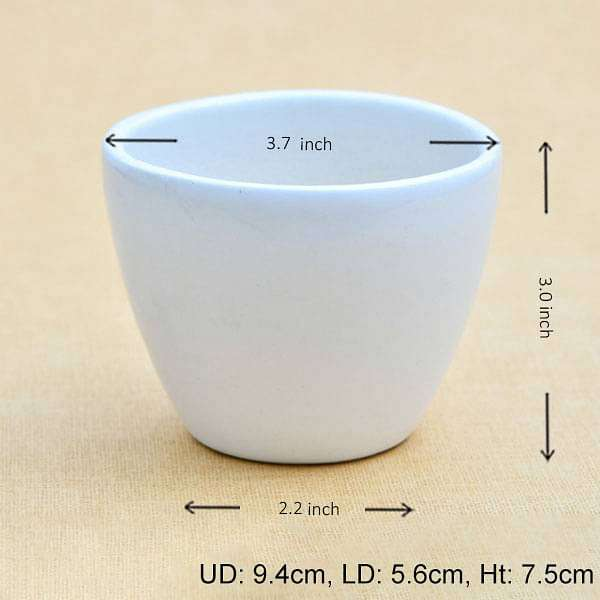 3.7 inch (9 cm) Round  Egg Ceramic Pot (White) (set of 2) - Nurserylive