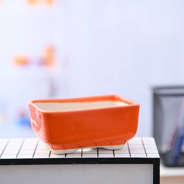 3.8 inch (10 cm)  Bonsai Rectangle Ceramic Pot (Orange) (set of 3) - Nurserylive