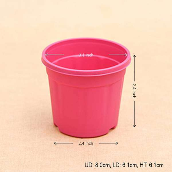 3 inch (8 cm) Grower Round Plastic Pot (Dark Pink) (set of 6) - Nurserylive